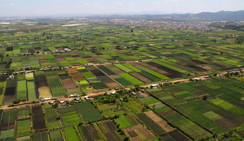Área rural - Campo - Agricultura - Mogi das Cruzes