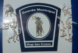 Drogas apreendidas pela Guarda Municipal de Mogi das Cruzes em Cezar de Souza