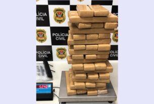 Drogas apreendidas pela Polícia Civil de Mogi